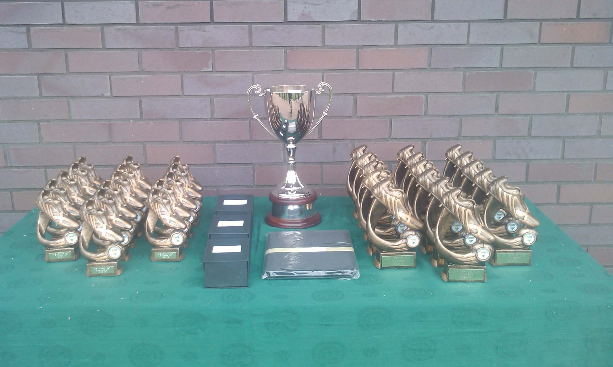 SYL Trophies 2013